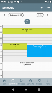 Schedule in one day view mode
